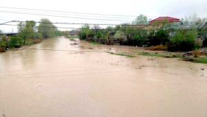 Ploile au umflat apele râurilor