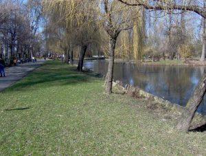 Exces de zel în Parcul Ştrand