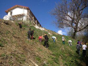 Livada a fost înfiinţată pe un teren în pantă