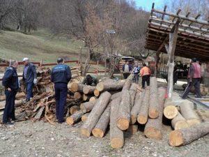 Poliţia, în control la firme de prelucare masă lemnoasă
