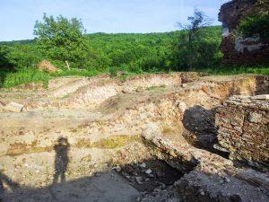 Ruinele bisericii vechi de la Vieroşi
