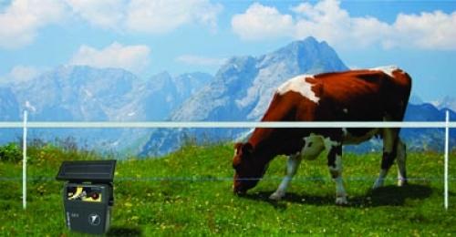 Cum poți avea o fermă modernă și care să îți  aducă venituri substanțiale în 2017?