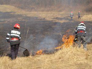 Pompierii argeşeni, puşi pe jar de incendiile de vegetaţie