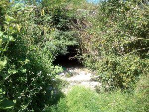 Râuri curăţate în Argeş