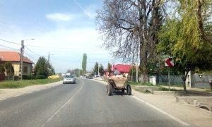 Apel al şoferilor către Poliţia Rutieră – Salvaţi-ne de căruţele de pe drumurile naţionale!