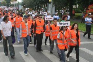 Concurs de educaţie rutieră la Costeşti