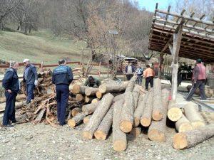 Făcea comerţ ilicit cu lemne