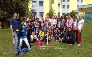Team Teaching în Slovenia