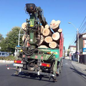Au înnebunit de tot?! Camioanele cu buşteni se plimbă prin Piteşti