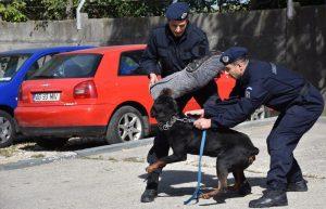 Jandarmii argeşeni, implicaţi în circa o mie de misiuni