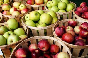 An catastrofal pentru producţia de mere