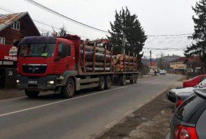 Camioanele cară zi şi noapte lemn tăiat din pădurile Argeşului