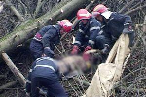 Bărbatul strivit de copac a murit
