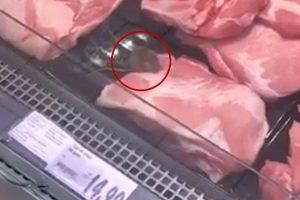 La Kaufland Curtea de Argeş şoarecii se hârjonesc prin vitrina cu cărnuri