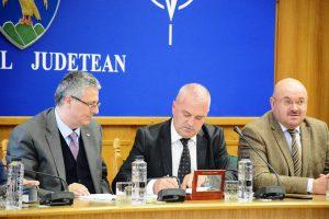 Reabilitarea Cetăţii Poenari a primit finanţare