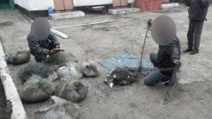 Suspecţii, lângă plasele de pescuit