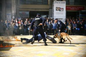 Jandarmii argeşeni au făcut spectacol de ziua lor