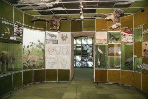Muzeul îşi aşteaptă vizitatorii şi de 1 Mai