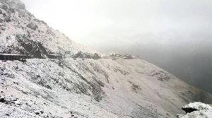 A nins la Cota 2000
